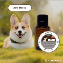 Huiles Essentielles Anti-Stress...