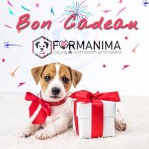 Bon Cadeau Formanima