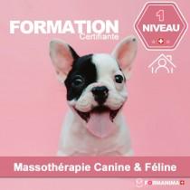 Formation Massothérapie - Niveau...