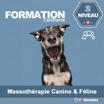 Formation Massothérapie - Niveau 2 - Groupe