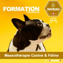 Formation Massothérapie - Niveau 3 PRO - En Groupe