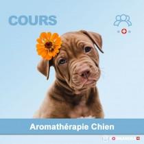 Cours d'Aromathérapie Animale