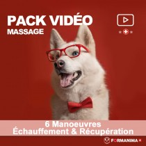 Pack 6 Manoeuvres Massage...