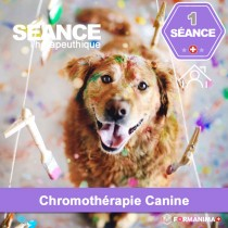 Séance de Chromothérapie Canine à...