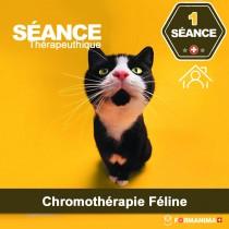 Séance de Chromothérapie Féline à...