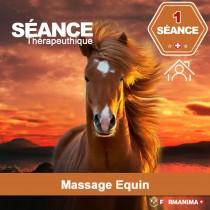 Séance de Massage Equin