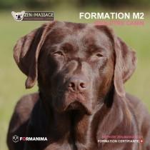 Formation massage canin - module 2