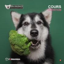 Cours alimentation pour animaux