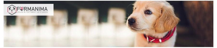 Produits de Soins pour Animaux | Boutique en ligne Suisse